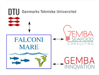 Falconi Mare collaborate with GEMBA and DTU