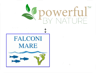 Falconi Mare collaborate also with Powerful By Nature, Workshops og Retreat